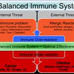 Nutrisi untuk Sistem Imun