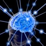 Shaklee Kepala Batas: Lechitin Untuk Sel Otak Berkembang