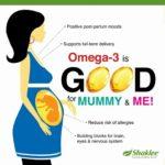 Omega Sangat Baik Untuk Ibu Hamil
