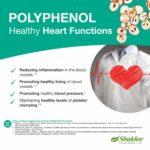 7 Kebaikan Polifenol Dalam Vivix Shaklee