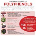 Apakah Kebaikan Polifenol